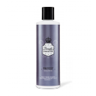 Beauty Protector Protect & Blonde Toning Shampoo